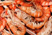 picture of norway lobster  - Crabs for paella. Typical Spanish Food.Mediterranean diet.