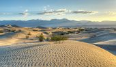 foto of mesquite  - Sand dunes in Mesquite Flat Sand Dunes at dawn in Death Valley National Park California USA - JPG