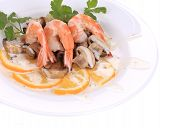 Shrimp salad with mushrooms and white sauce.