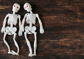 two funny skeleton on a black wooden board