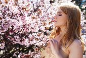 woman smelling flowers in blooming sakura garden
