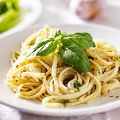 italian pasta with pesto sauce close up photo