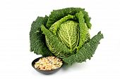 Green Cabbage And Soup Pulses