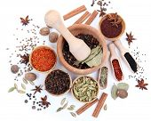 Various spices and herbs isolated on white