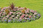 Ornamental flower bed