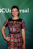 LOS ANGELES - JUL 13:  Casey Wilson at the NBCUniversal July 2014 TCA at Beverly Hilton on July 13,