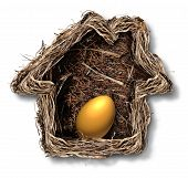 pic of metaphor  - Home finances and residential equity symbol as a bird nest shaped as a family house with a gold egg inside as a metaphor for financial security planning and investing in real estate for retirement freedom - JPG