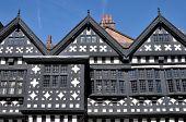Tudor Manor House