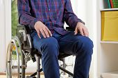 Capable Man In Shirt On Wheelchair