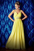 Portrait of a magnificent young woman in long evening dress. Fashion shot.