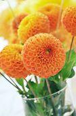 Orange Dahlias Bouquet