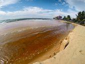 River flowing into the sea through sandy beach on the island of Sri Lanka
