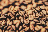 Coffe Bean Closeup