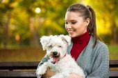 beautiful woman and his dog maltezer in autumn in autumn