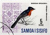 Flycatcher Stamp