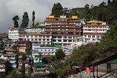 picture of darjeeling  - View over Dali Monastery in Darjeeling West Bengal - JPG