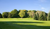 Bright Green Golf Course