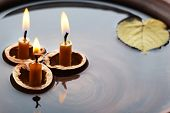 Leaves and three nutshells with candles floating in water
