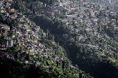 Cityscape, Darjeeling, West Bengal, India