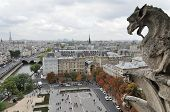 Notre Dame's Gargoyle