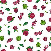 Hand drawing of red berries. Seamless pattern with white background. Raspberries and currant.