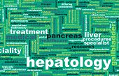 Hepatology or Hepatologist Medical Field Specialty As Art
