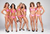 image of bikini model  - Bikini models wearing pink bikinis in a studio environment - JPG