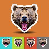 Beautiful Bear Head On Geometric Style.