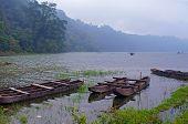 Fishing Boats In Mist