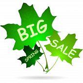Illustration Of Words Big Spring Sale