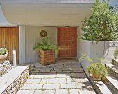 solid wood door and flowerpot Athens Greece