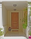 house entrance with solid wood door and flowerpot