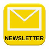 Button with Icon: Newsletter