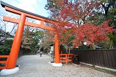 Tourists Visit Shimogamo Shrine Orange Archway In Kyoto, Japan