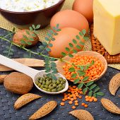 picture of curd  - Protein food  - JPG