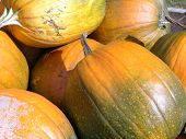 pic of jack-o-laterns-jack-o-latern  - pumpkins stow massachusetts october taken at a farm stand - JPG