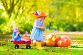 stock photo of baby cowboy  - Two happy children at pumpkin patch during Halloween - JPG