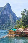 picture of raft  - Floating residence raft in Khao Sok National Park - JPG