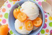 image of kumquat  - Vanilla ice cream with fresh kumquats in colorful bowl - JPG