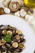 image of edible mushroom  - Mixed edible mushrooms dish with raw ingredients - JPG