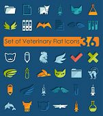 picture of veterinary  - Set of veterinary flat icons for Web and Mobile Applications - JPG