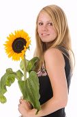 The Girl With A Sunflower