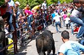 Running with the Bull in Arcos de la Frontera