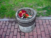 Garbage bin with flowers