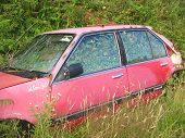 Old Car With A New Owner-Overgrowth!!
