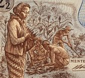 INDONESIA - CIRCA 1961: Field Workers on 2 and half Rupiah 1961 Banknote from Indonesia.