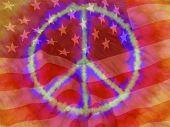 Peace American Flag Reddish