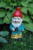 Garden Gnome Lost