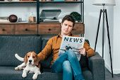Concentrated Man Reading Newspaper On Sofa And Stroking Beagle Dog poster