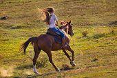 Vista posterior de joven en blue jeans a caballo